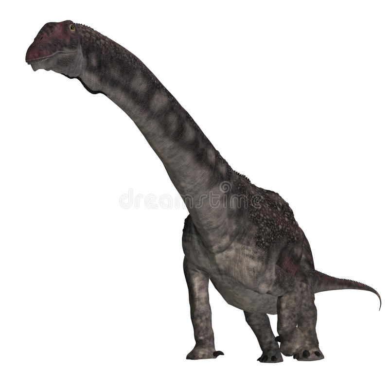 diamantinasaurusdinosaur royaltyfri illustrationer