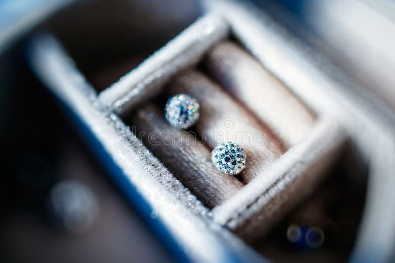 Diamantkristallörhängen royaltyfri bild