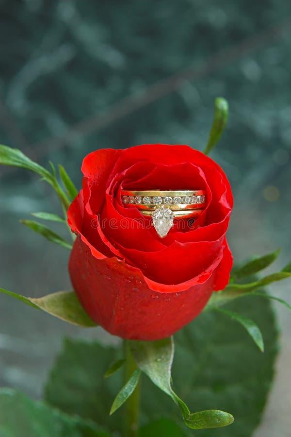diamentów kwiaty miłości zdjęcia stock