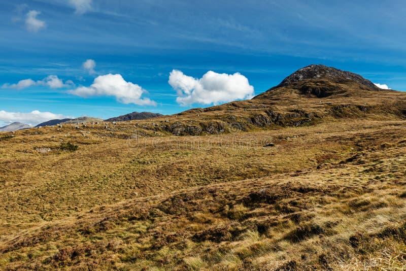 Diamentowy wzgórze Connemara park narodowy, Letterfrack, Co galway Ireland zdjęcia royalty free