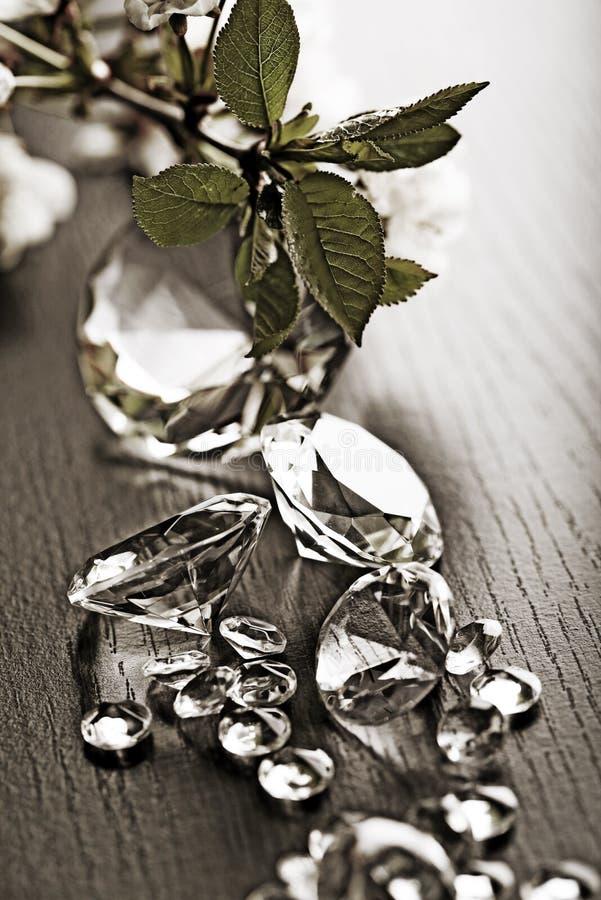 diamentu naturalny biżuteryjny fotografia stock