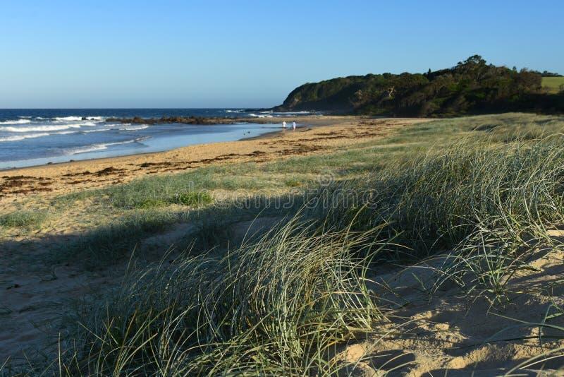 Diamond Beach Australia royalty free stock images