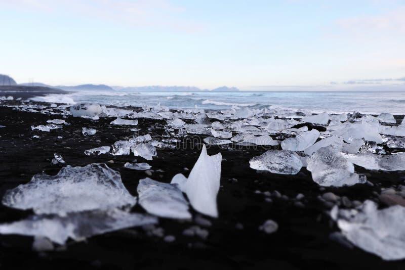 Diamond beach - Iceland - Jokulsarlon. Une colombe de glace sur la plage volcanique noire de Jokulsarlon en Islande au pied de la lagune glaciaire stock photography