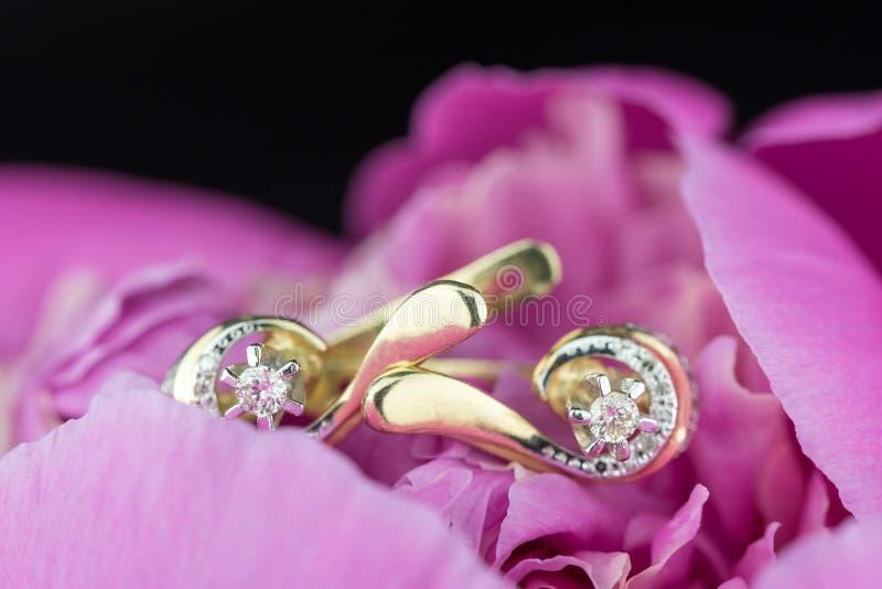 Diamond Earrings photos libres de droits