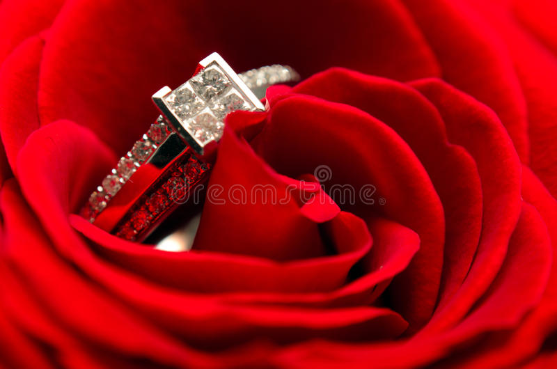 Download Diamond Engagement Ring stock photo. Image of floral - 22923028