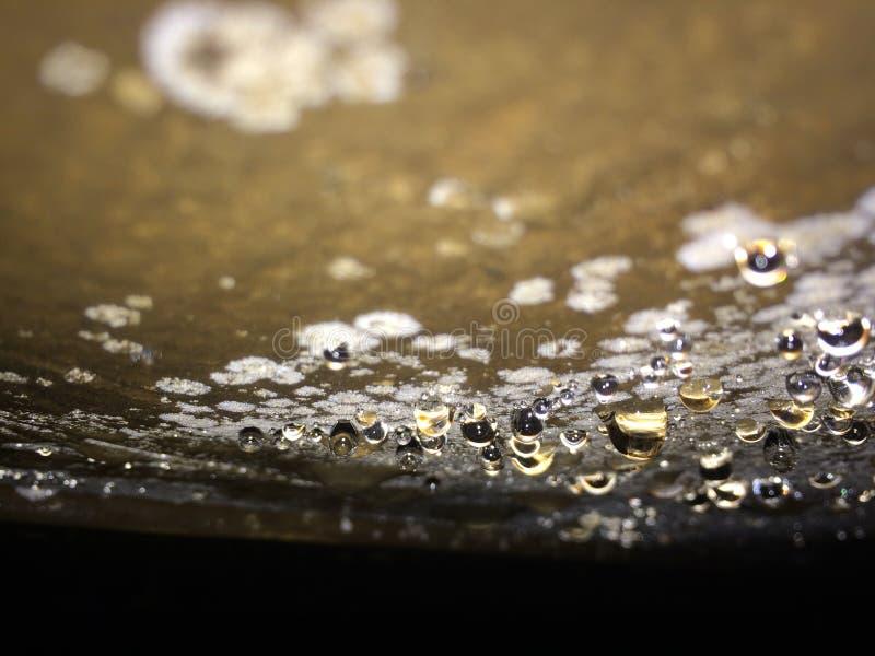 Diamond Found vero bianco in serbatoio di acqua immagini stock
