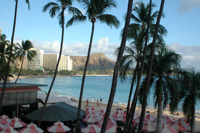 Diamond Head from the Royal royalty free stock images