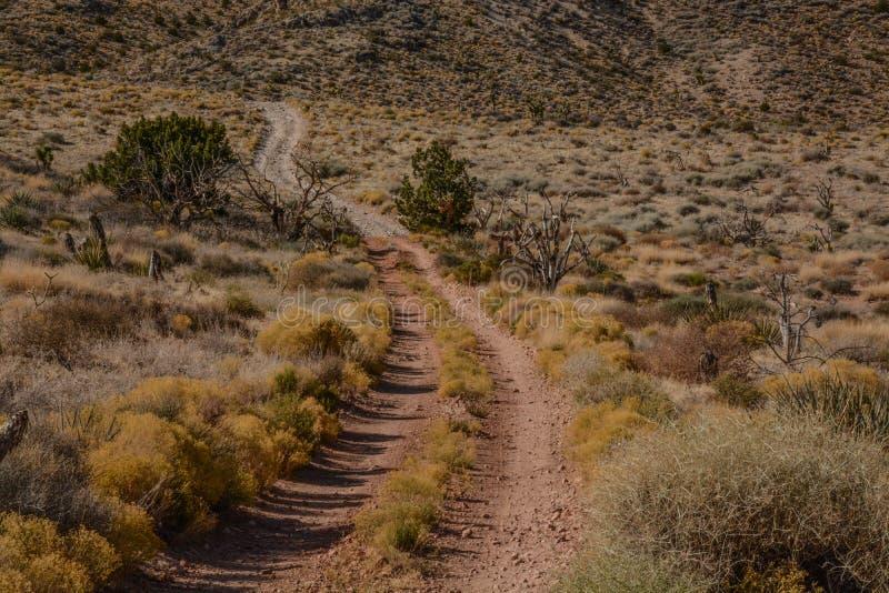 Diamond Off Road Trails bleu images stock