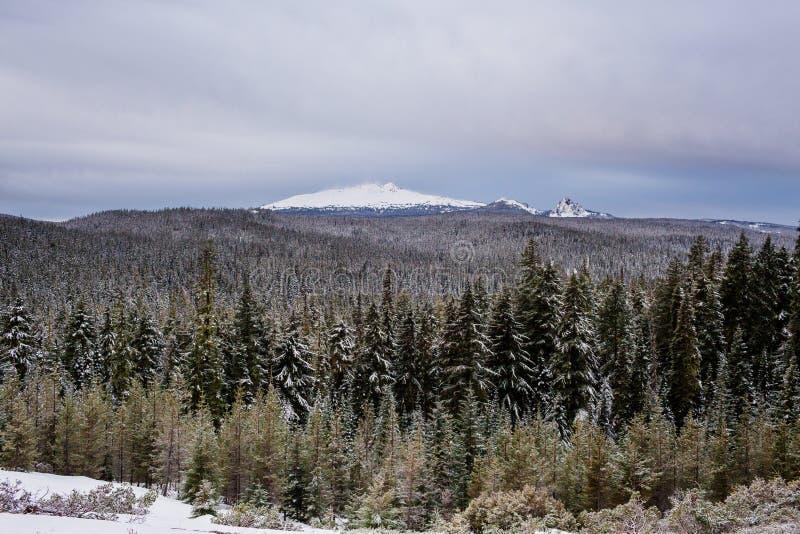 Diamond Peak Willamette National Forest fotografia de stock