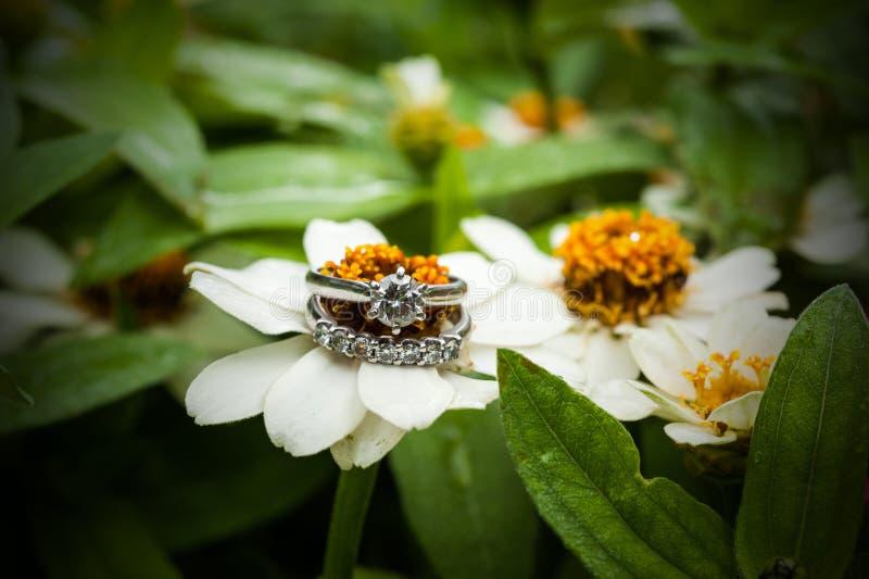 Diamond Ring image libre de droits