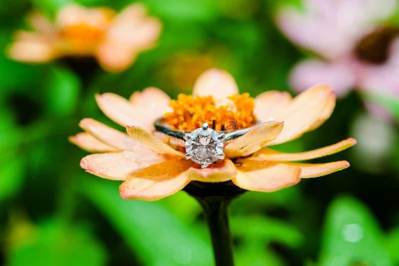 Diamond Ring image stock