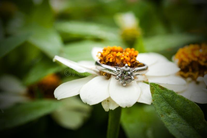 Diamond Ring immagini stock