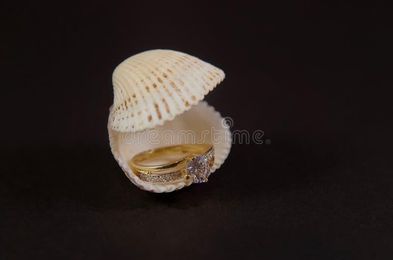 Diamond Ring na concha do mar imagem de stock royalty free