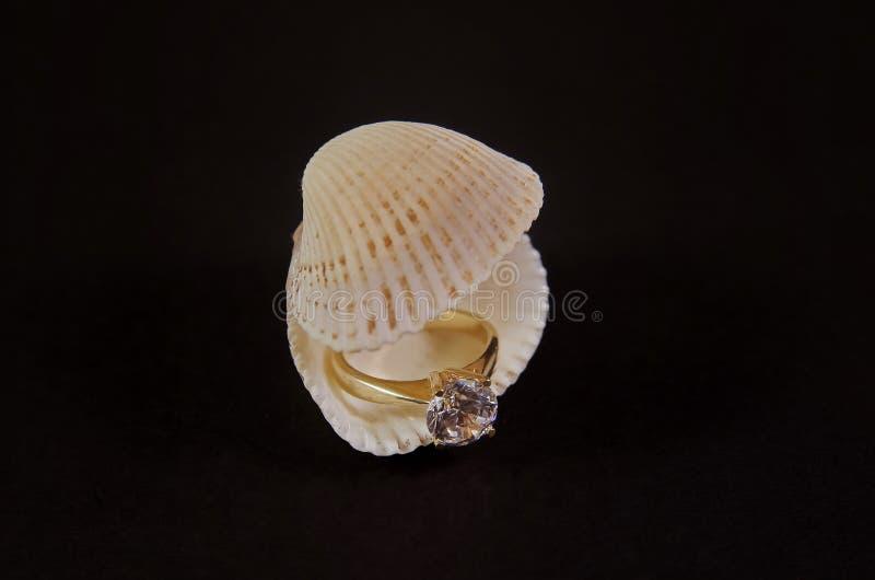 Diamond Ring na concha do mar imagens de stock royalty free