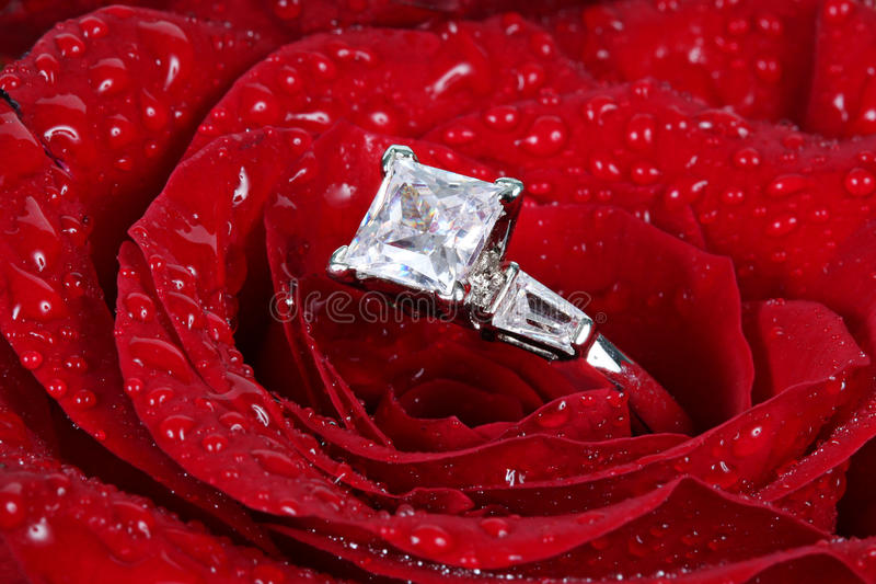 Diamond ring in red rose royalty free stock photography