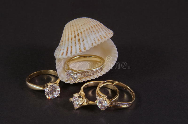 Diamond Rings na concha do mar foto de stock royalty free