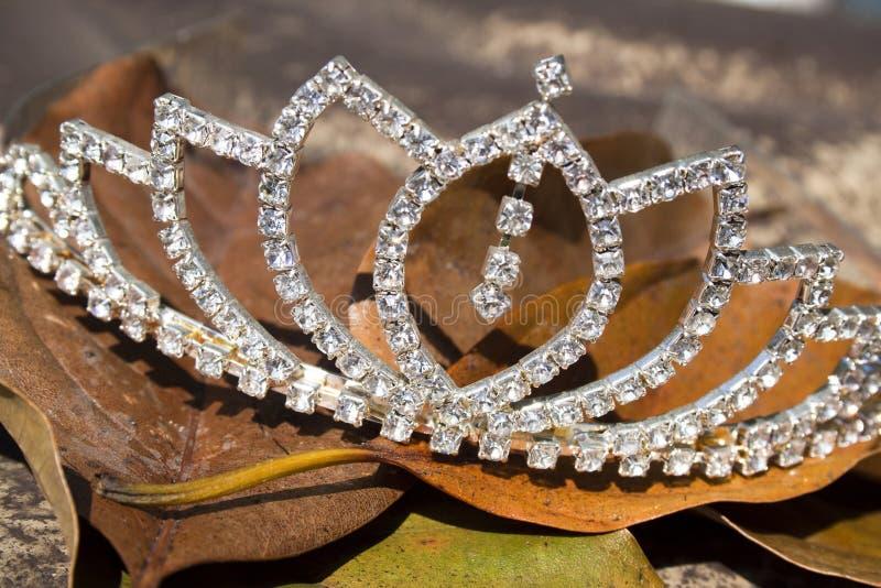 Diamond Tiara On en säng av bruna Autumn Leaves royaltyfri bild