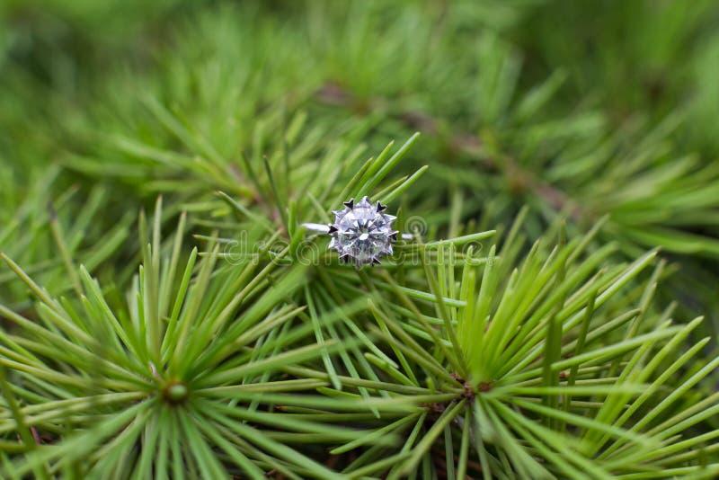 Diamond Wedding Ring fotos de archivo