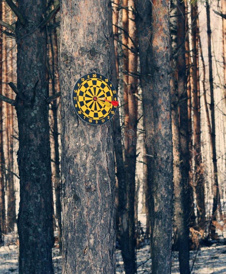 Diana en un árbol fotos de archivo libres de regalías