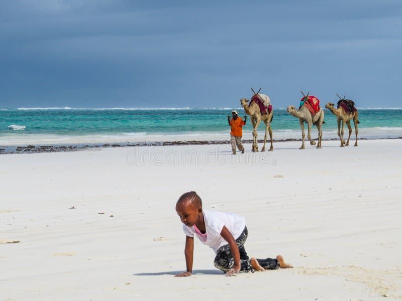 Diana plaży scena obraz stock