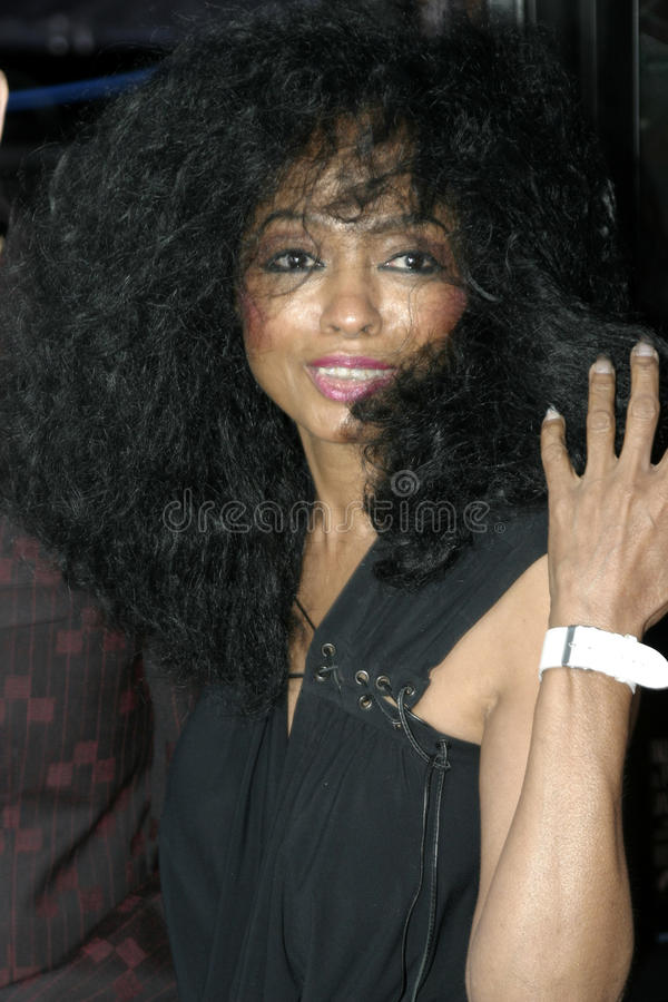 Diana Ross royalty-vrije stock foto