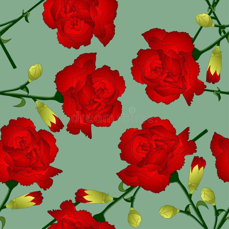 Dianthus caryophyllus - Czerwony goździka kwiat na Zielonym tle również zwrócić corel ilustracji wektora royalty ilustracja