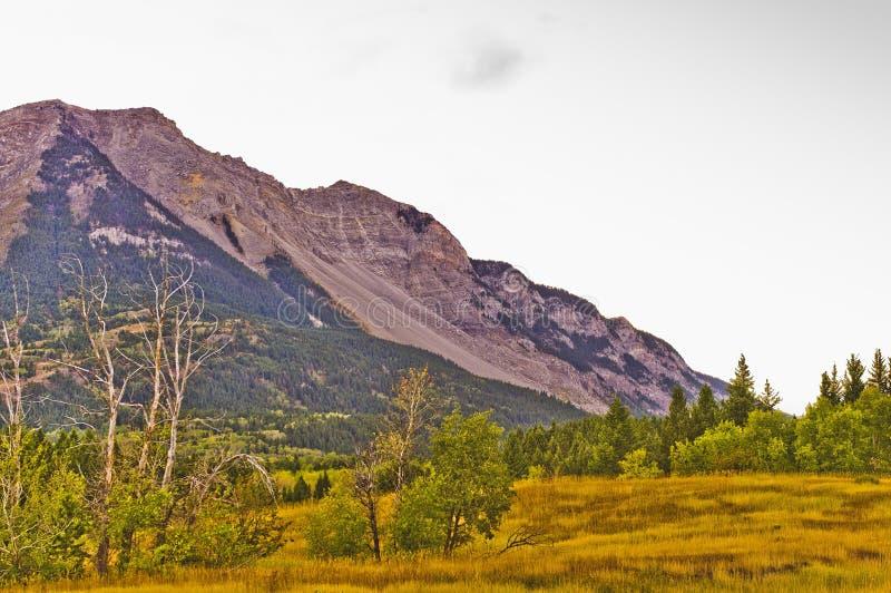 Diapositiva de la montaña de Frank foto de archivo libre de regalías