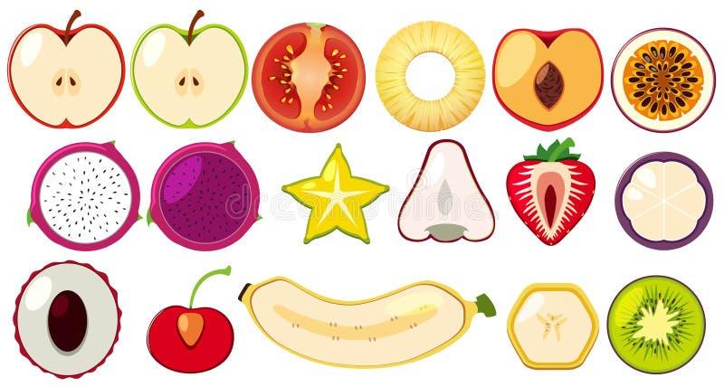 Diapositiva de las frutas tropicales por la mitad ilustración del vector