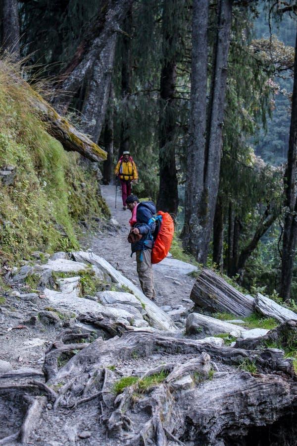 Diari di trekking nelle montagne di Himachal Pradesh, India immagini stock libere da diritti