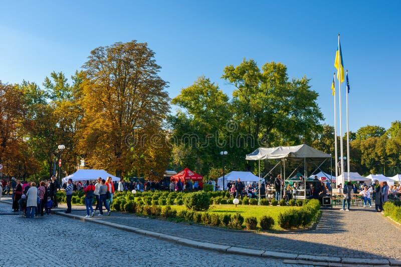 Dias checos no festival do TransCarpathia fotos de stock