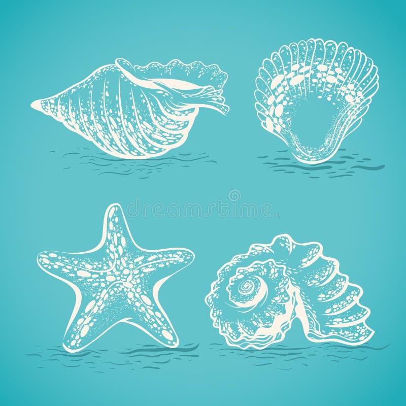 Dibujo de bosquejo a mano de diversas conchas marinas y estrellas de mar ilustración del vector