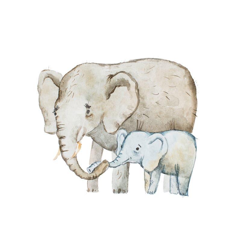 Dibujo de la acuarela de la familia, de la madre y del becerro del elefante ilustración del vector