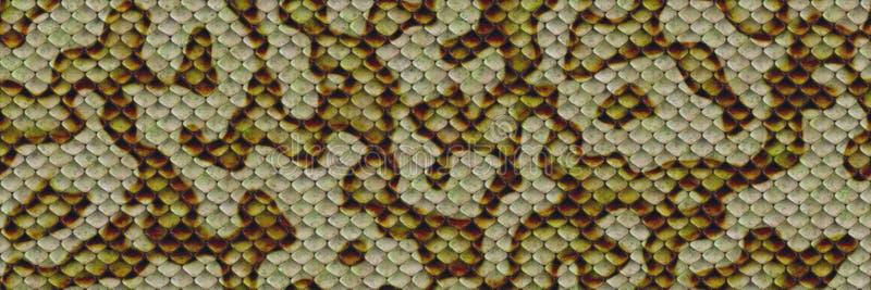 Dibujo de textura sin fisuras en la piel imagen de archivo