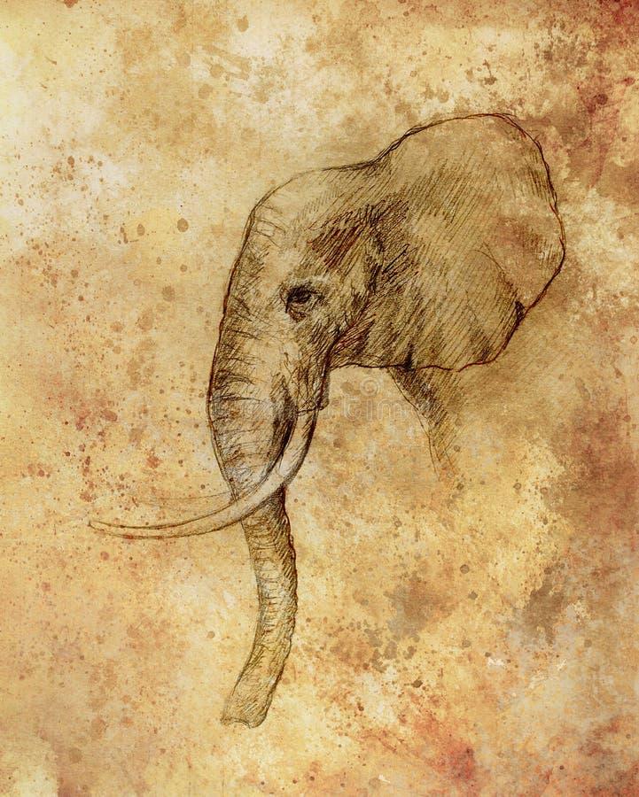 Dibujo de un elefante, dibujo del perfil con las l?neas y sombras ilustración del vector
