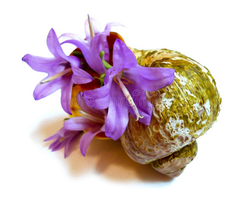 Dibujo de una campana púrpura de la flor en una concha marina desigual vieja fotografía de archivo