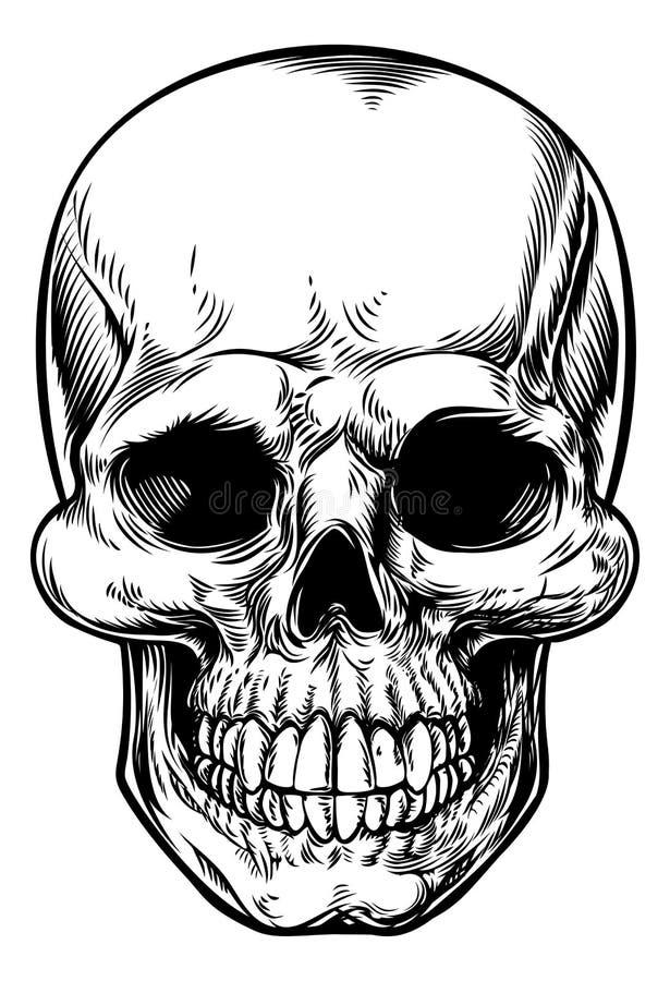 Dibujo del cráneo ilustración del vector
