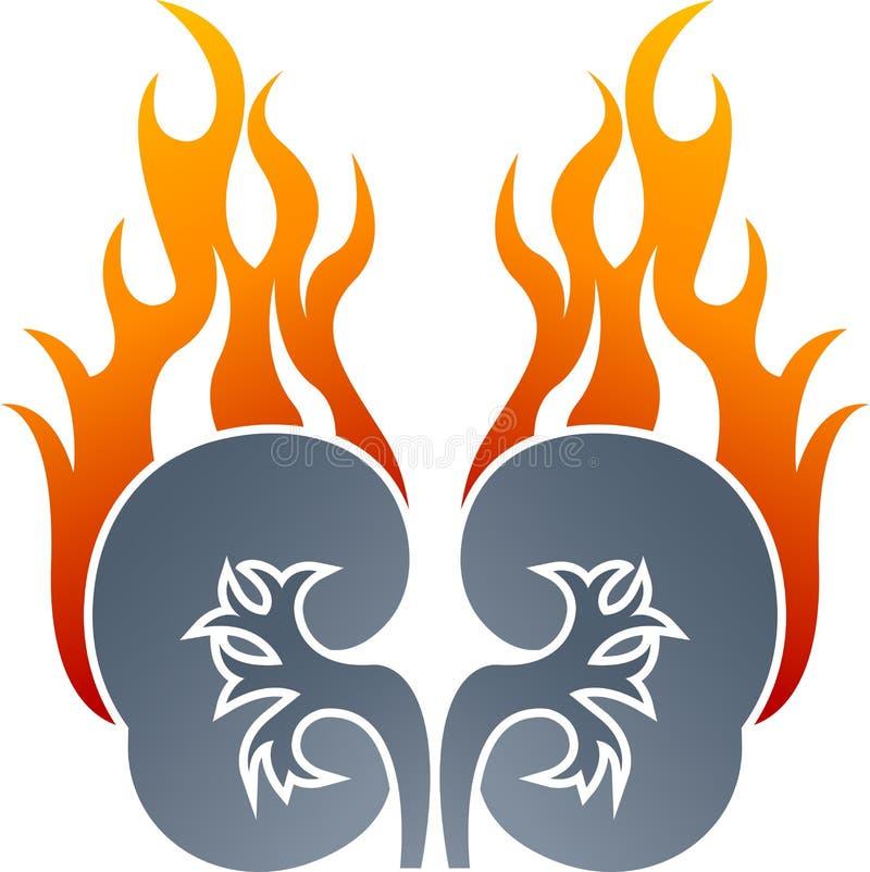 Dibujo del logotipo de la llama del riñón stock de ilustración