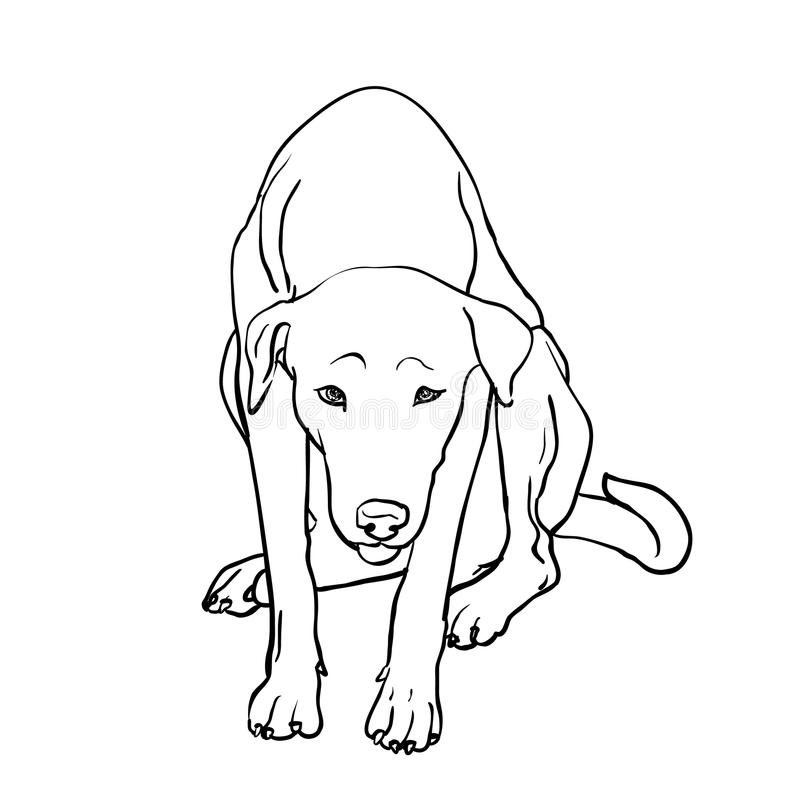 Dibujo del perro perdido triste stock de ilustración