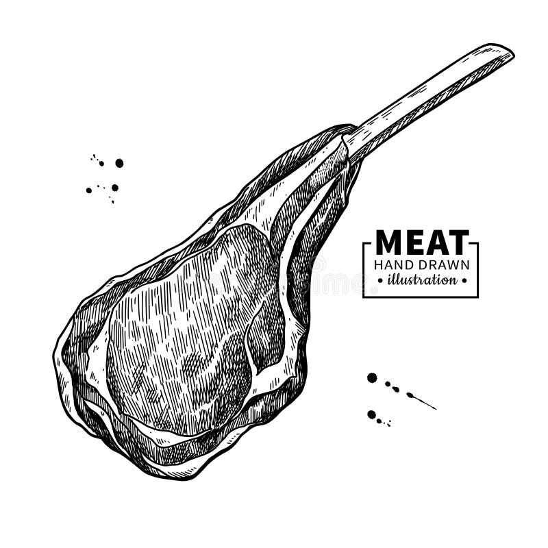 Dibujo del vector de la costilla del cordero Bosquejo dibujado mano de la carne roja Ejemplo crudo grabado de la comida ilustración del vector