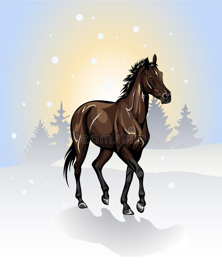 Dibujo del vector de un caballo en invierno imagenes de archivo