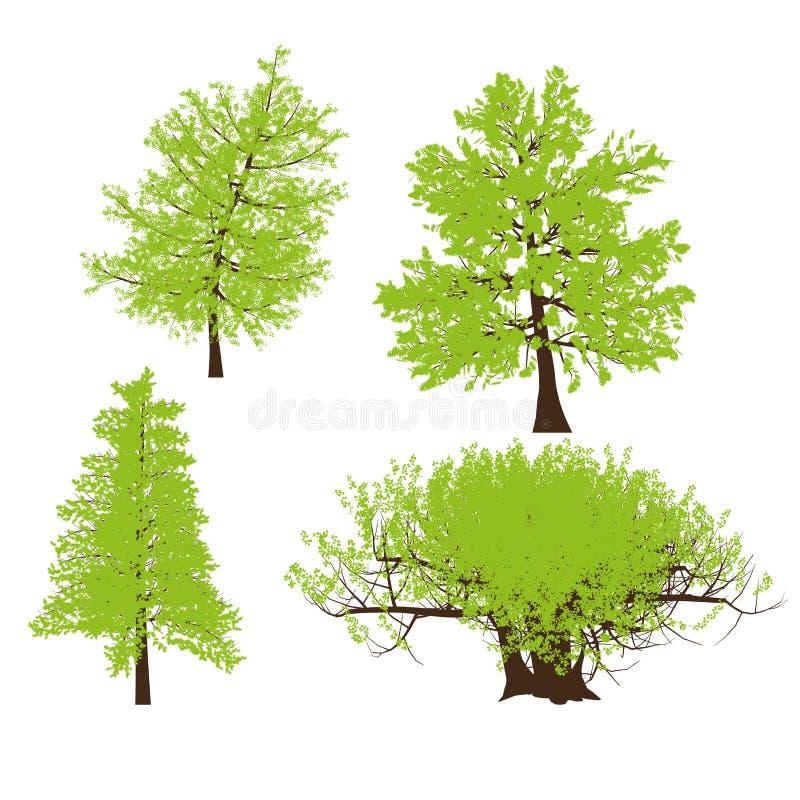 Dibujo del vector del árbol libre illustration