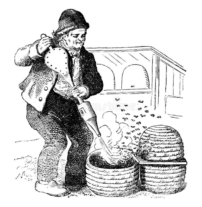 Dibujo del vector del vintage o ejemplo de grabado antiguo del apicultor Working con la colmena y fumador stock de ilustración