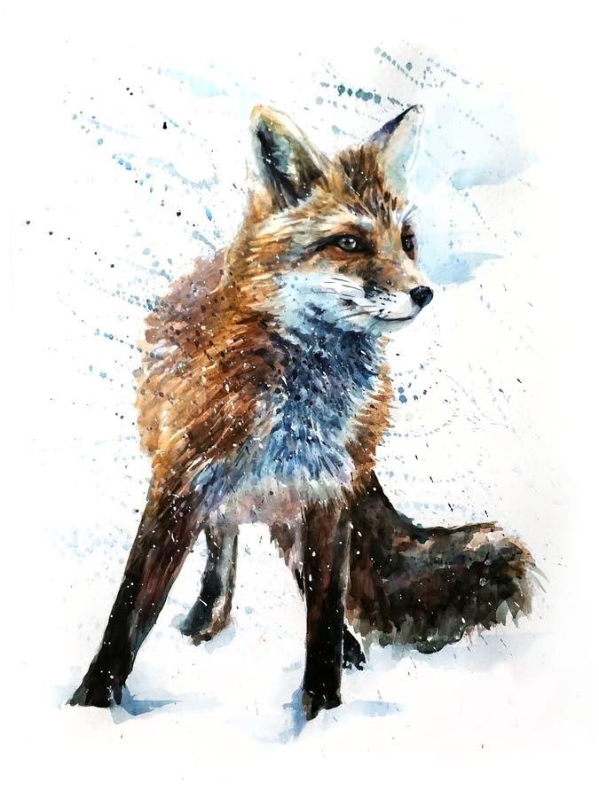 Dibujo despredador de la pintura de la acuarela del Fox libre illustration