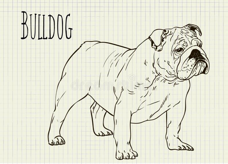 Dibujo en dogo de la hoja del cuaderno libre illustration