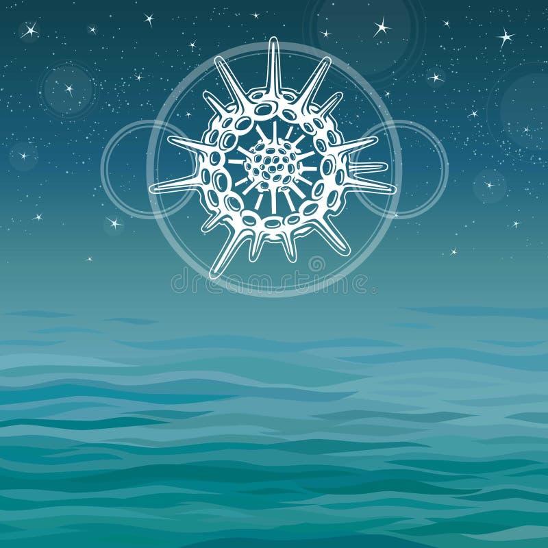 Dibujo estilizado de un radiolario - el mamífero marino elemental stock de ilustración