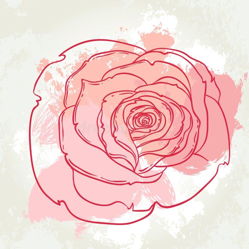 Dibujo hermoso del ramo de las rosas en fondo beige del grunge Mano libre illustration