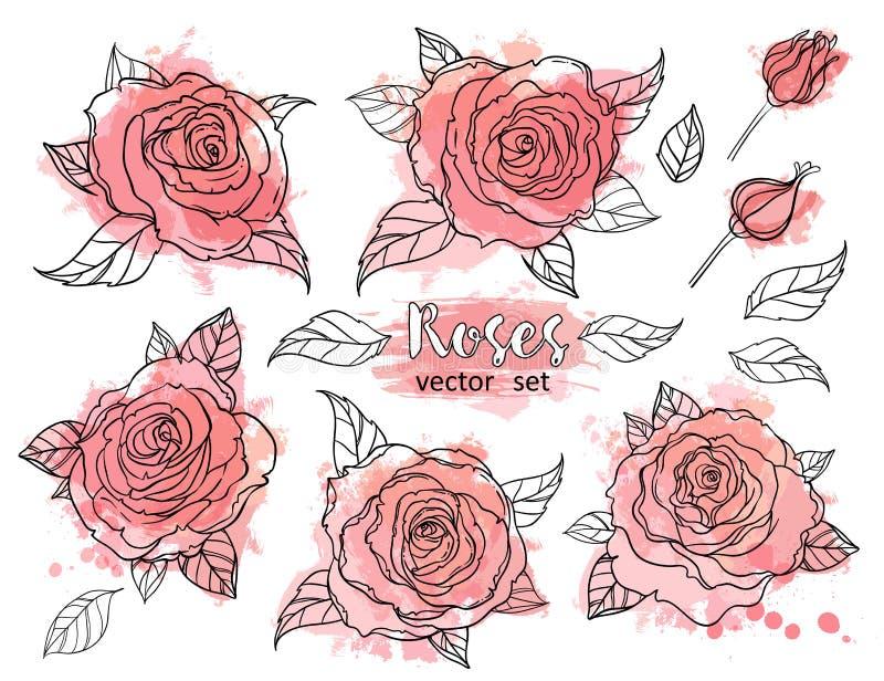Dibujo hermoso del ramo de las rosas en fondo beige del grunge Mano stock de ilustración