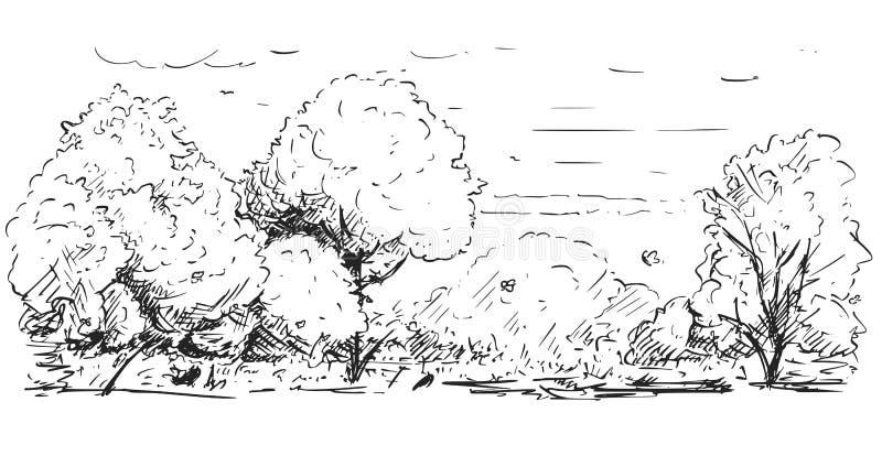 Dibujo incompleto del paisaje del parque de naturaleza ilustración del vector