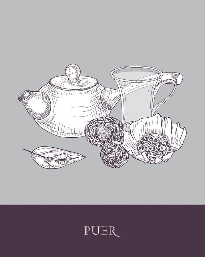 Dibujo monocromático de la tetera con la manija larga, la taza de cristal transparente y las hojas de té del puer en fondo gris d ilustración del vector