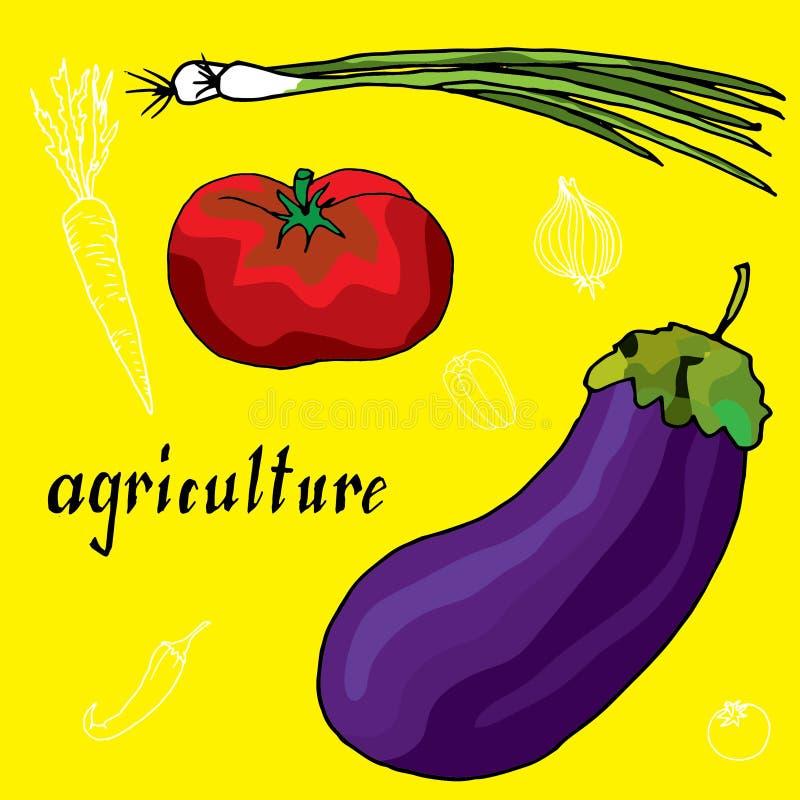 Dibujo original de la cebolla, de la pimienta fría, del tomate y de la berenjena stock de ilustración